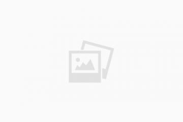 רפורמת הפטם – סקירת שוק הפטם והצעה למדיניות